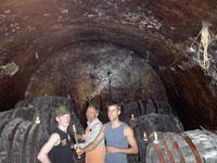 wine tasting and wine yards